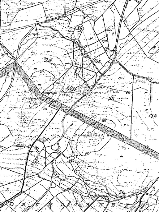 Detail of Griffith's Map