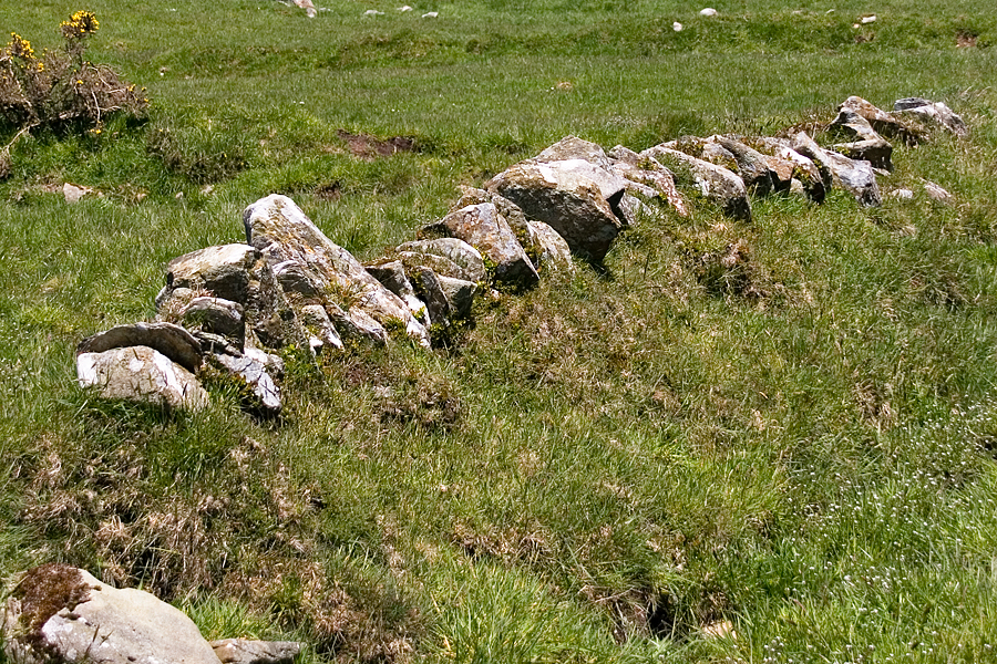 Section of the walled enclosure